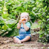 5 redenen waarom 'gezond eten' voor je baby belangrijk is. www.thelemonkitchen.nl