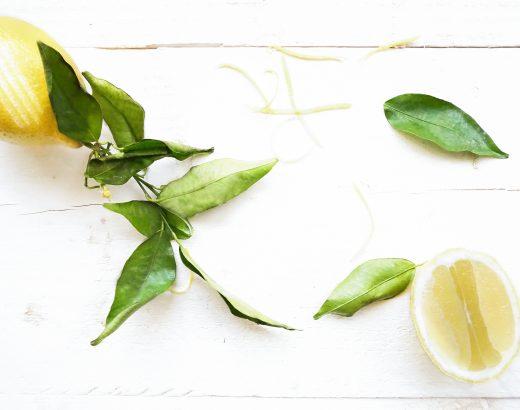 5 redenen waarom je vaker citrusvruchten moet kopen www.thelemonkitchen.nl