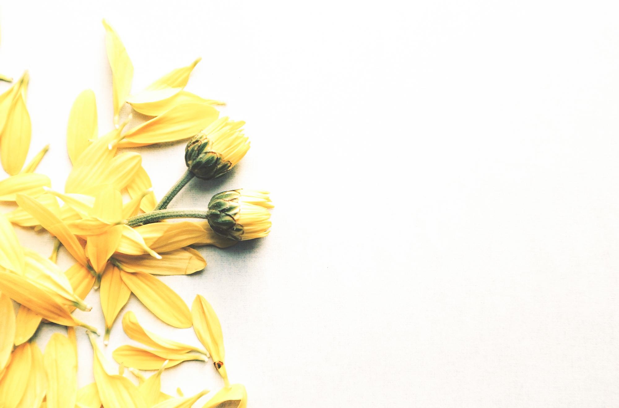 Voel je energiek met de kleur geel